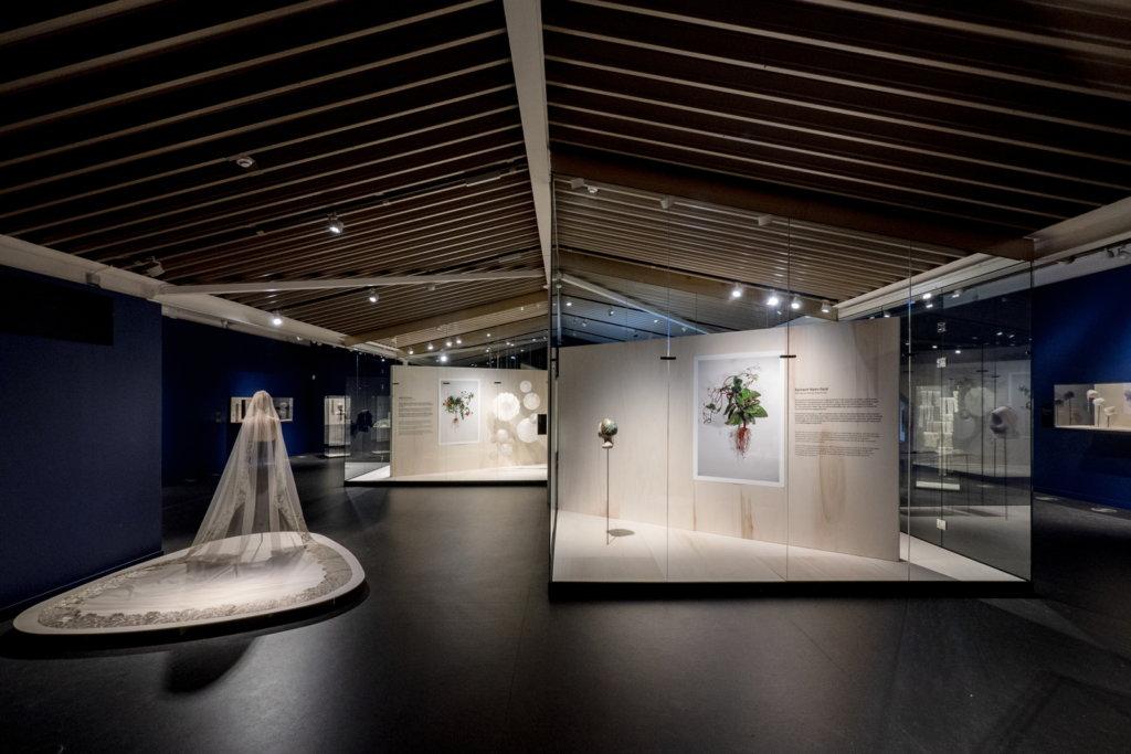 Zaalzichten expositie Biolace, © Iwert Bernakiewicz