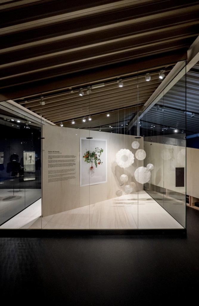 Zaalzicht expositie Biolace, © Iwert Bernakiewicz