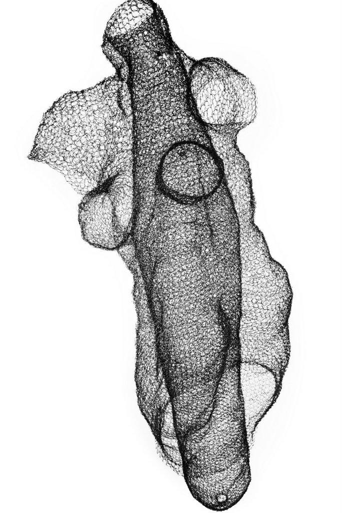 Monika Supé, Kleiderkoerper, detail