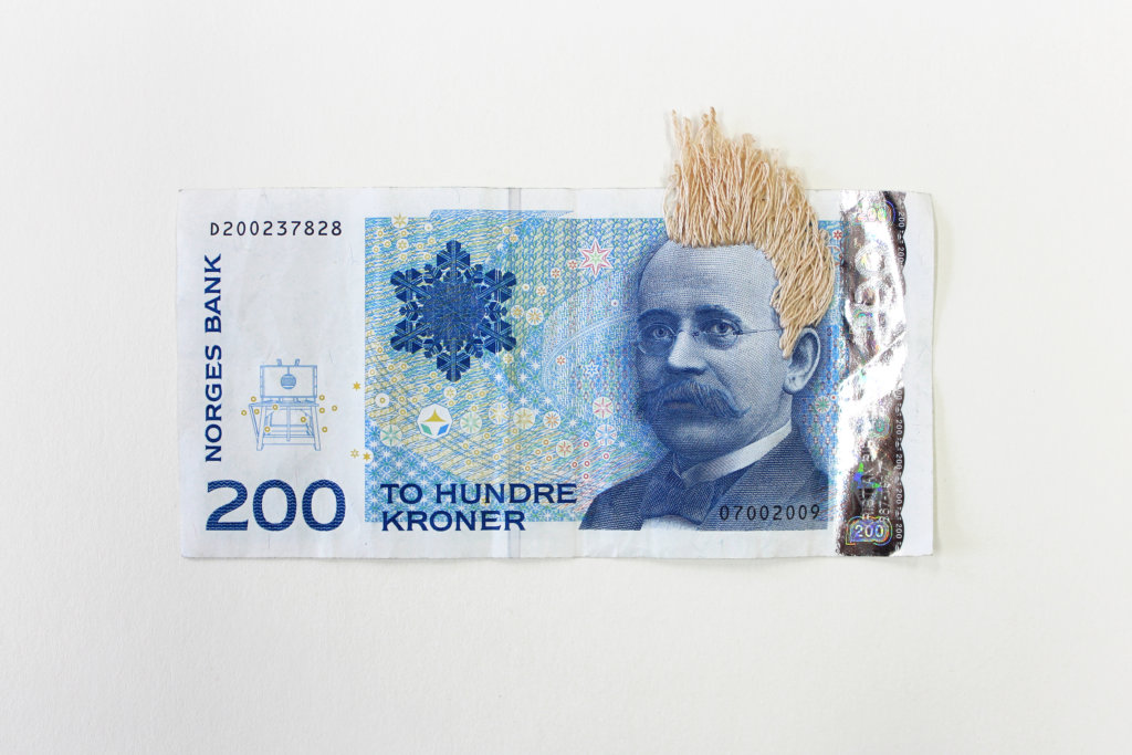 Noora Schroderus, Bank Note Series (2014-2015)