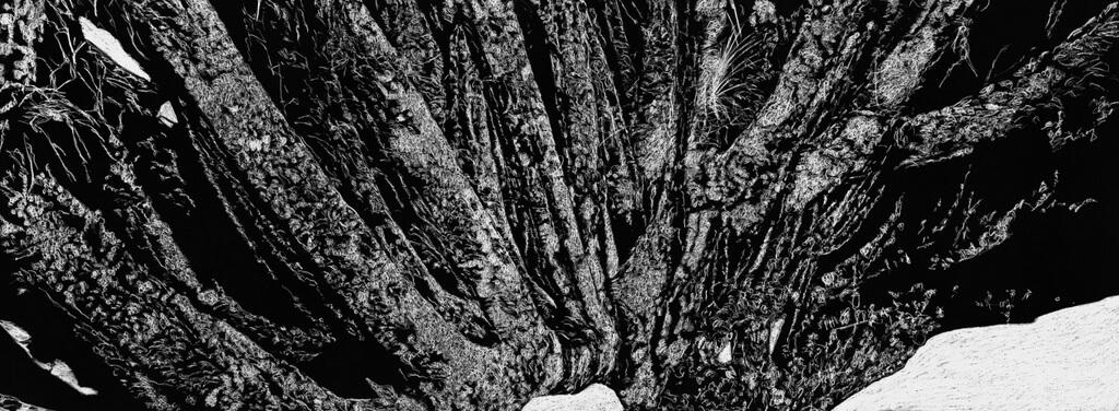 "Jan Hendrix, ""The Yagul tapestries V"", 2018 (foto: Oak Taylor Smith)."